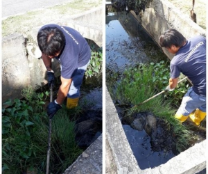 Cleaning Storm Drain & Apartment Drain